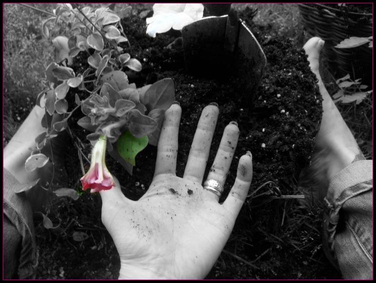 garden-hand