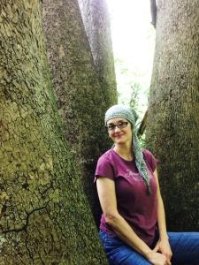 treeseat