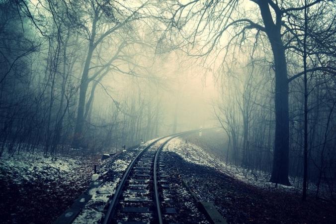 snowy-tracks