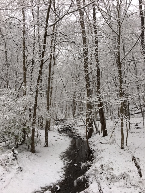 snowy-creek