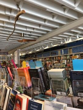 fairhope-bookstore